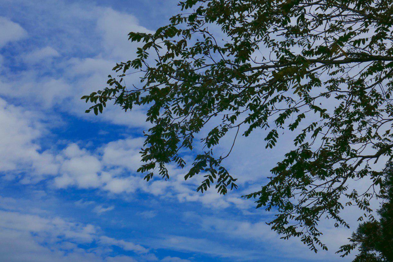 岩手県野田村の秋の空