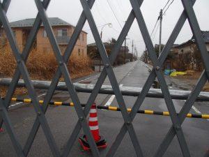 福島県富岡町夜ノ森 フェンス手前は、除染されて、帰ってくるように言われている地域。向こうは、帰還困難区域。
