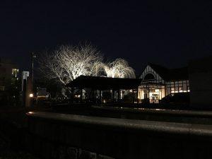 写真はJR琴平駅の夜景。1922年当時の面影を残す「近代化産業遺産」のひとつで、ウジケさんが利用している最寄り駅はJR琴平駅(香川県仲多度郡琴平町、JR四国土讃線)です。ウジケさんは琴平駅のある琴平町に隣接する善通寺市の生まれ・現在住ですが、琴平町との境に住んでましたので、公立学校ですが、小学校から中学校までは、琴平の学校へ通いました。私立学校ならば感覚は別でしょうが、善通寺の在なのに琴平通学という違和感が強くありました。通学としては便利ですが、その違和感を一言で言えば「異邦人」の感覚とでもいえばいいでしょうか。他者性を強く突きつけられたことが、ウジケさんが共感や感動よりも納得がいかないことへ注目するきっかけになったように思います。「聞くまでもないが、お前もそう思うだろう。そうだろうな」などと言われると「ちょっと待てよ」ってなってしまいます。