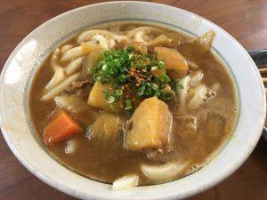 恒例のうどんまつりです。実はウジケさんは、最初の香川県在住時に、うどん屋さんで「カレーうどん」を食べたことがありませんでした。家庭でつくるカレーうどんといえば、前日に食べたカレーライス用の残りのカレーを、茹でたうどんに和えるというのが定番でしょうが、本格的なカレーうどんは、出汁となじませた、ややまろやかな風味の一品ですね。写真は、職場近くの平野屋さん(香川県仲多度郡多度津町)の逸品です。ゴロゴロしたじゃがいもがカレーライスを想起させますが、ライスとはちがううどん用のカレーですね。40年以上、生きていますが、はじめてたべた讃岐うどんのカレーうどんです。僕もまだまだ自覚が足りないですね。